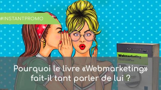 commentaire livre webmarketing
